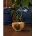 Чашка для кофе и чая KIRIKO Green Blur