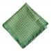 Зелёный нагрудный платок с узором фуляр Ralph Lauren