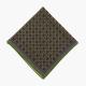 Зеленый платок из шерсти и шелка с узором пейсли VARSUTIE